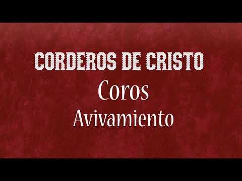 Coros Con Corderos De Cristo Parte 2   Corderos Studios  Grabaciones