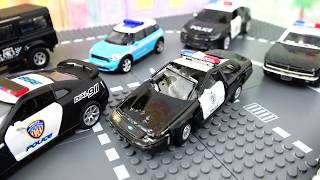large Park of Police Cars for kids