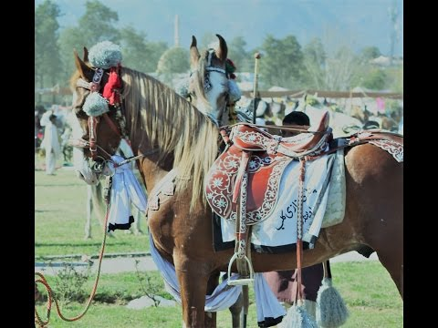 Tent Pegging Sports Complex| Feb 2017| Islamabad