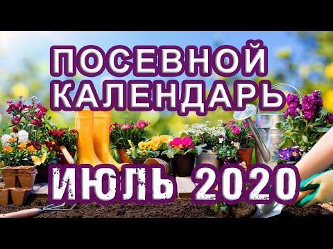 Лунный ПОСЕВНОЙ календарь на ИЮЛЬ 2020 🌱 КАЛЕНДАРЬ ОГОРОДНИКА и САДОВОДА | садоводство | календарь | садовода | посевной | июль_2020 | лунный | на | и