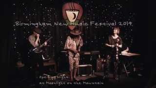 Birmingham New Music Festival 2014 - Davey WIlliams, LaDonna Smith, SI Reasoning, Brad Davis +