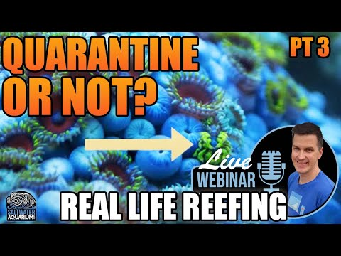Rolling The Dice…or Not: Quarantining Marine Fish & Coral - Real Life Reefing Webinar
