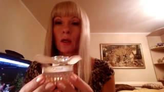 видео Духи Keiko Mecheri BaL De Roses. Купить парфюм Кейко Мечери Бал де Розес, туалетная вода с доставкой по Москве и России наложенным платежом. Стоимость и отзывы на парфюмерию