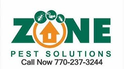 Pest Control Atlanta, Lithonia, and Alpharetta Ga