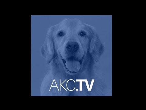 AKC Live - Season 1 Episode 6