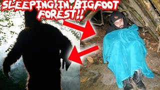 (BIGFOOT) 24 HOUR OVERNIGHT CHALLENGE IN BIGFOOT FOREST! BIGFOOT IS REAL I FOUND THIS! | MOE SARGI