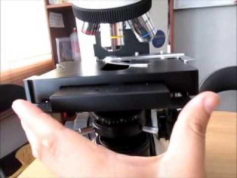 microscopio cx31 olympus youtube rh youtube com