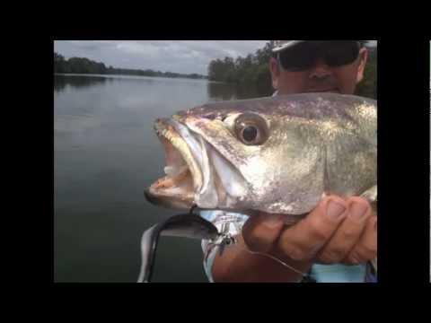 Fishing Port Macquarie Hastings River