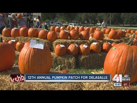 12th annual pumpkin patch for DeLaSalle Charter School