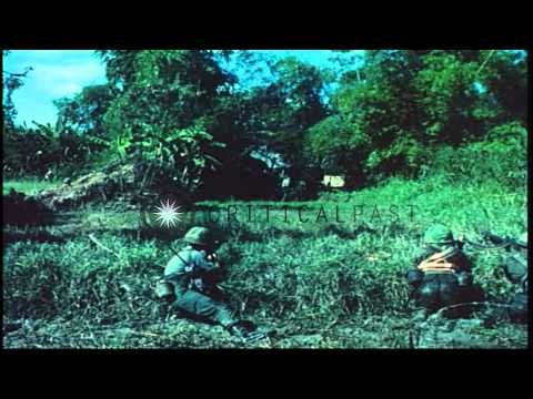 ROK (Republic of Korea) Tiger Division patrol soldiers on an alert in a rice padd...HD Stock Footage