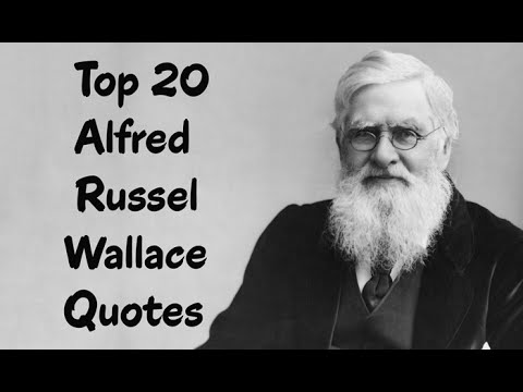 Top 20 Alfred Russel Wallace Quotes (Author of The Malay Archipelago)