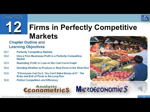 Microeconomics - Chapter 12: Firms in Perfectly Competitive Markets