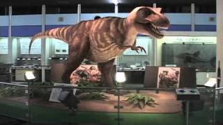 青少年科学センターの恐竜が出没しました。 ダイザラザウルス?かな。