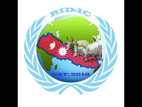 Non Governmental Organizations NGOs