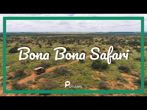 BONA BONA SAFARI — N12 TREASURE ROUTE | DRONE FOOTAGE | Pointers Travel