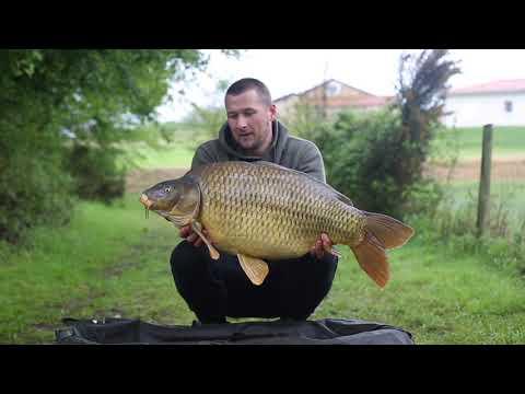 Le Queroy - Napoleonic Lake & La Vienne River CARP FISHING