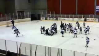 Драка между ОЦОР Могилев и Витебском. 15 марта 2015. Юные хоккеисты 2005 года рождения. Чемпинат РБ.