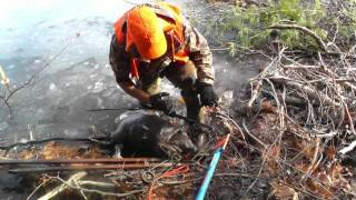 How to Trap Otters and Beavers Under Ice with Snares and Body Grip Traps