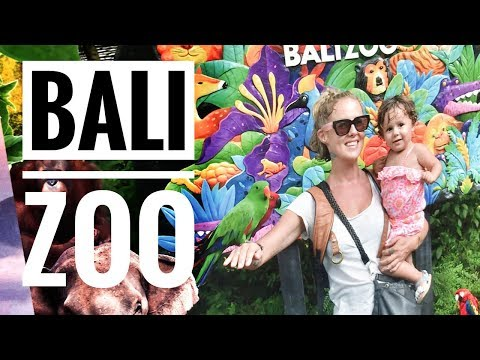 BEST ZOO IN THE WORLD - THE BALI ZOO, INDONESIA WITH KIDS