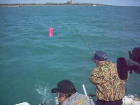 Salmon fishing charter waukegan il youtube for Waukegan fishing charters