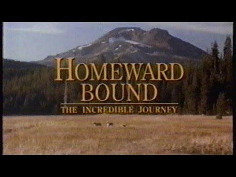 Homeward Bound: The Incredible Journey Trailer, Feb 1993