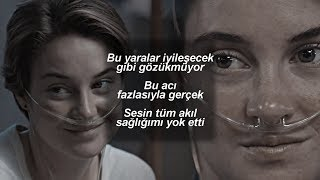 Evanescence My Immortal Türkçe Çeviri