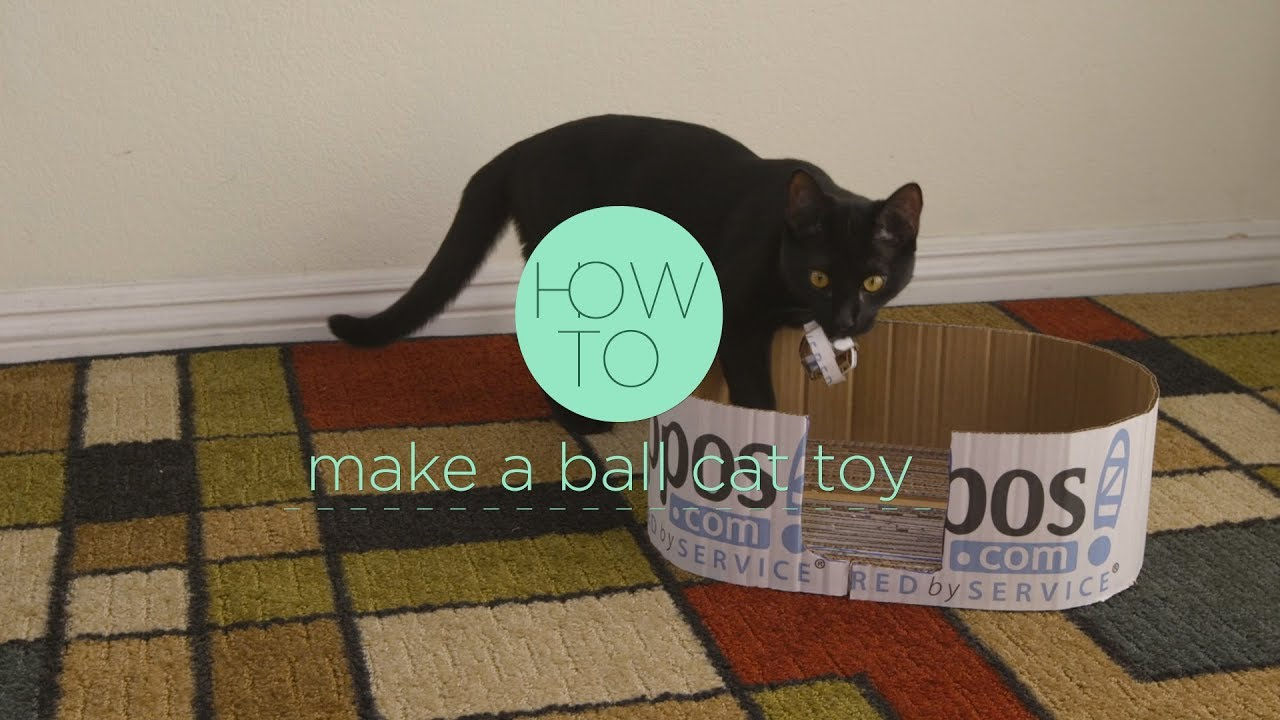 How To Make A Ball Cat Toy From A Cardboard Box