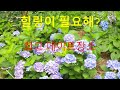 수원 광교 앨리웨이 데이트장소 추천 핫플레이스 고고!