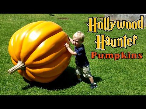 DIY Halloween Props   Making Large Fiberglass Pumpkins   Hagrid's Pumpkin Patch Inspired