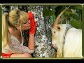 Анекдот про козу читает Станислав Шабалин mp3