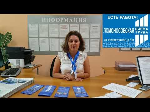 Ломоносовский Центр занятости снял вакансии на видео