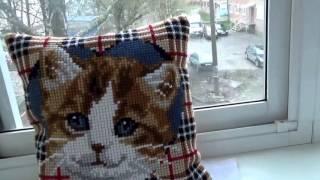История про кота и вышивальные приметы.