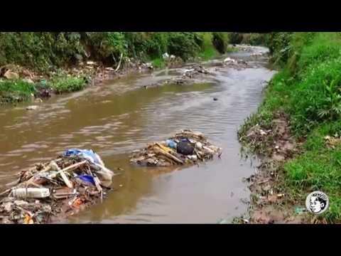 Le lac Kivu en danger
