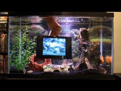 SONY XPERIA TABLET Z FISH TANK WATER TEST (MUST SEE)