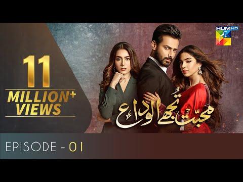 Download Mohabbat Tujhe Alvida Episode 1 | English Subtitles | HUM TV Drama 17 June 2020
