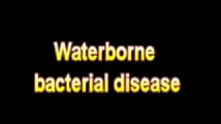 What Is The Definition Of Waterborne bacterial disease