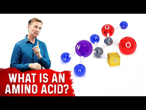 What Is An Amino Acid? | Dr.Berg
