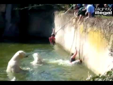 Polar Bear Attacks Girl