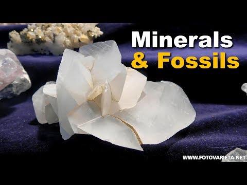 Minerals, Fossils EuroMineralExpo 2018 Turin, International Exhibition, Minerali E Fossili (2)
