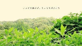 ご視聴ありがとうございます! 湘南出身シンガーソングライター 【未来-...