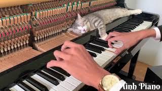 Fur Elise Piano Meowssage