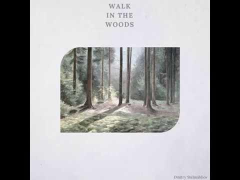 Dmitry Stelmakhov - Walk In The Woods (original mix) Deep house