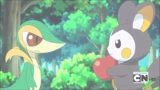 Snivy/Tsutarja AMV- You