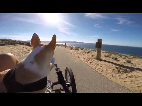 Riding my Catrike at Fort Ord - Monterey, California 2-15-2015