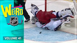 """An Absolute Shocker"" 
