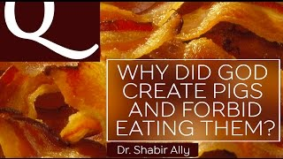 Q&A: Why Did God Create Pigs & Prohibit Eating Them? | Dr. Shabir Ally