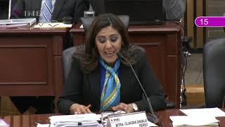 Intervención de la Consejera Claudia Zavala sobre el Anteproyecto de Presupuesto del INE para 2019.