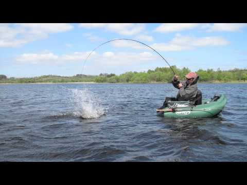 Pike fishing from the belly boat youtube for Belly boat fishing