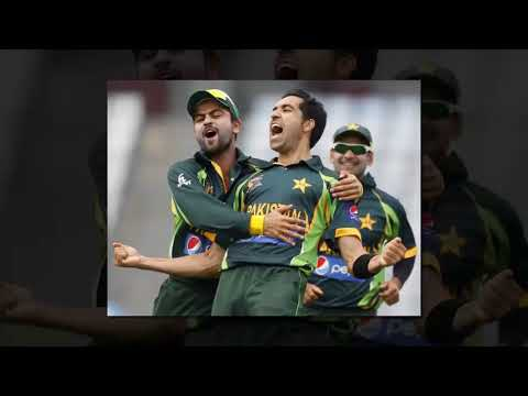 Umar Gul is a Best Pakistany Crickter He is a Most Importent Player