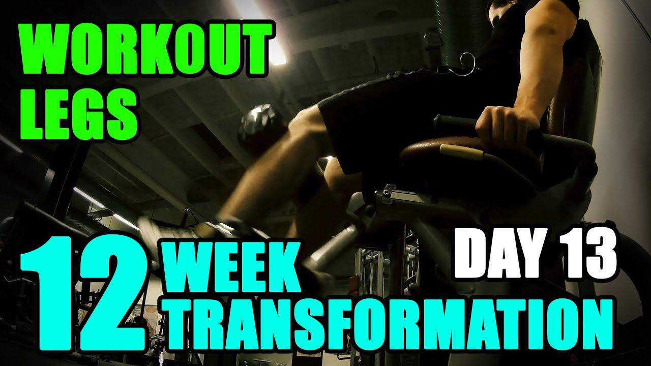 Arnold schwarzeneggers blueprint to cut legs workout l 12 week arnold schwarzeneggers blueprint to cut legs workout l 12 week transformation challenge l day 13 malvernweather Gallery